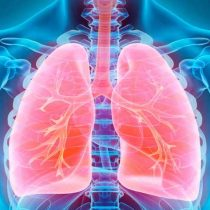Sin tratamiento, la esperanza de vida en personas con hipertensión arterial pulmonar puede ser de 2.8 años