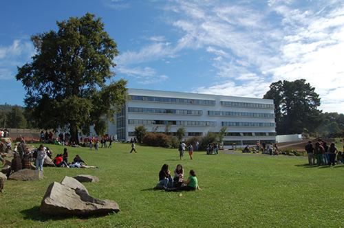Centro de políticas públicas de la UC Temuco