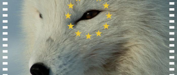 Ciclo de cine digital Eurocinema por el Clima vía online