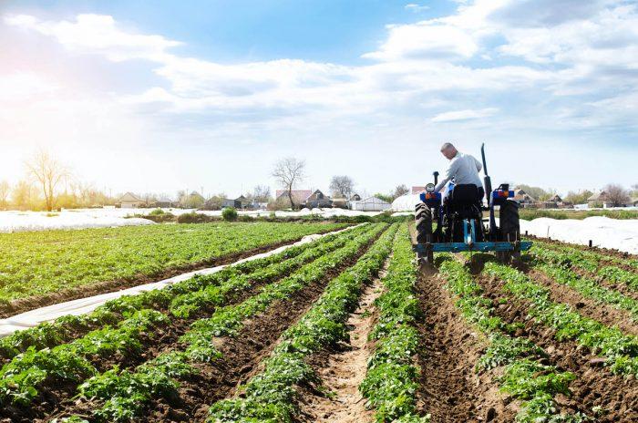 Gran agricultura y agua: la necesidad de adaptarnos