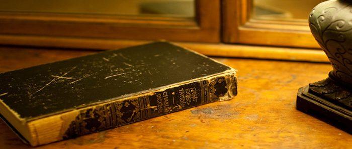 """Cita de libros: """"El infinito en un junco"""", el emotivo origen del libro y su conexión al presente"""