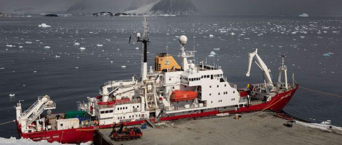 Estudio da cuenta de la importancia de las corrientes marinas antárticas en la distribución de especies