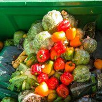 ¿Quienes son los responsables del desperdicio de alimentos?
