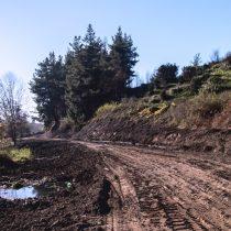 Conflicto en Laja: el proyecto urbanístico que amenaza el humedal La Señoraza