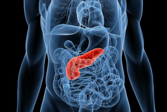 Advierten sobre aumento en la incidencia y mortalidad por cáncer de páncreas en Chile y el mundo