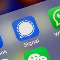WhatsApp: los millones de descargas registradas por Telegram y Signal tras el anuncio del cambio de las condiciones de uso de la app de Facebook