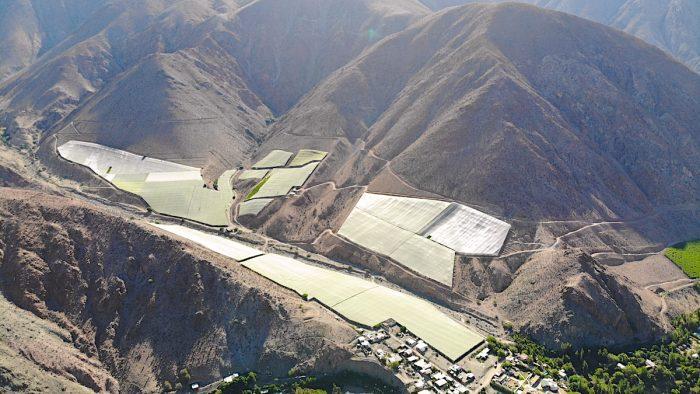 Innovadoras mallas sombreadoras en el norte de Chile disminuyen hasta en 25% el requerimiento de agua