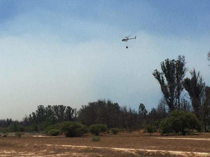 Refuerzan labores de combate al fuego tras rebrote de incendio en Quilpué cercano a Reserva Peñuelas