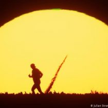 El 2020 iguala al 2016 como el año más caluroso alguna vez registrado