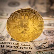 Un hombre ofrece recompensa por disco duro con USD 285 millones en bitcoines