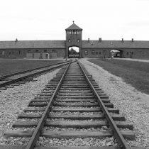 En el 76 aniversario de la liberación del campo de Auschwitz, la ONU pide unidad contra el resurgir del antisemitismo