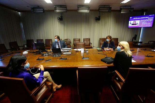 Despenalización del aborto: Comisión programa votación del proyecto para abril
