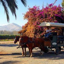 Cuatro panoramas al aire libre cerca de Santiago