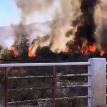 Incendio forestal en Monte Patria amenaza bencinera: autoridades declaran alerta roja para la comuna