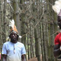 Maestros de danza africana realizan intercambio cultural con exponentes de danza mapuche en La Araucanía