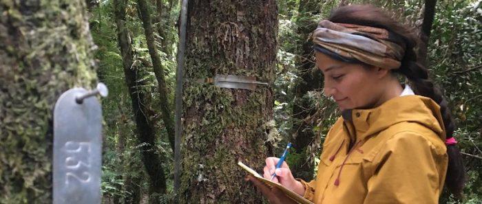 """Ecóloga Mariela Núñez-Ávila: """"Cuidar y restaurar nuestra casa: ése es el centro de  una Constitución ecológica""""."""