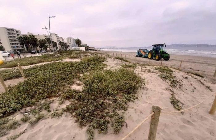 Empresarios turísticos se unen a proyecto para proteger dunas costeras de La Serena y Coquimbo