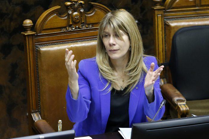 Presidenta del Senado anuncia que el Gobierno entregará propuesta de ayuda social para el  sector cultural