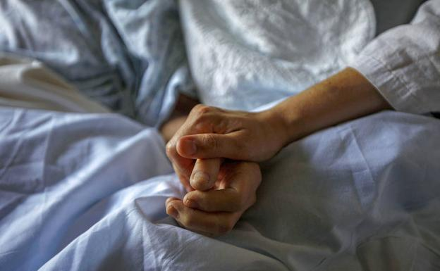Comisión de Salud de la Cámara no despachó proyecto de eutanasia: Hubo indicaciones que no fueron votadas