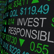 La importancia de los factores de sostenibilidad en la inversión responsable