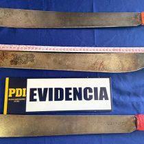 Caso Francisco Martínez: hermana entregó a la PDI machetes usados por malabarista muerto en Panguipulli