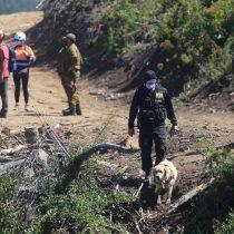 Desaparición de Tomás Bravo: Fiscal jefe de Arauco decretó el secreto de la carpeta investigativa por 40 días