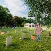Buscan agilizar proyecto que crea cementerio público de mascotas en la Región de Valparaíso