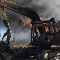 Se registra nuevo ataque incendiario que afectó a faena forestal en Cañete