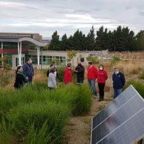 Iniciativas en Magallanes que ayudan a mitigar el cambio climático