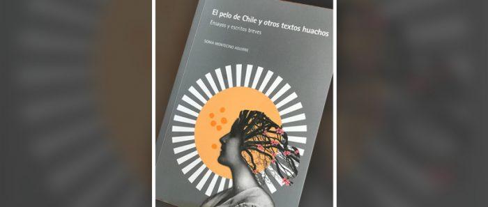 """""""El pelo de Chile y otros textos huachos"""": Sobre ollas comunes, mitos indígenas y gastropolítica"""