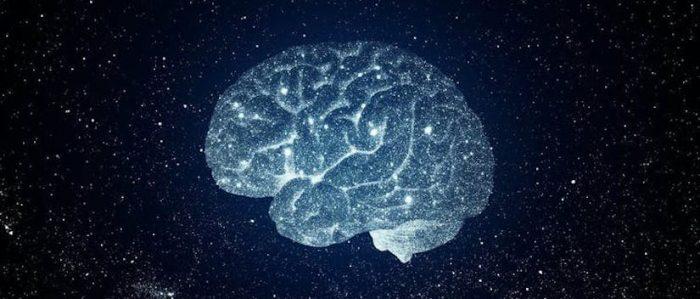 Cerebro y universo: ¿evolucionan de la misma forma?