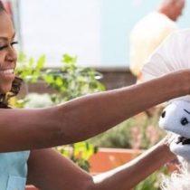 Productora y actriz: Michelle Obama, será dueña de un supermercado en nueva serie familiar