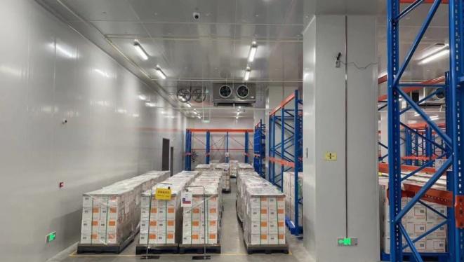 Presidente Piñera confirma llegada de 4 millones de vacunas contra el Covid del laboratorio chino Sinovac