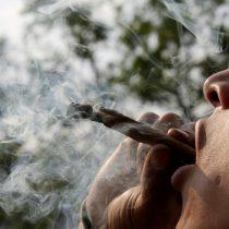 México más cerca de aprobar la marihuana recreativa: diputados aprueban ley