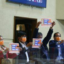 Cámara aprobó con 91 votos a favor la idea de legislar el proyecto de royalty minero
