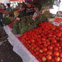 Acá si hay delivery: Ministerio de Agricultura lanza listado de feriantes con despacho a domicilio en nueve regiones del país