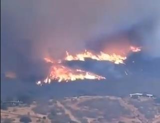 Mega incendio de Curacaví ya se encuentra controlado y afectó cerca de 450 hectáreas