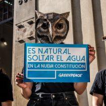 Encuesta revela que 96% de la población cree que los constituyentes deben ser claros y explícitos respecto al Medio Ambiente