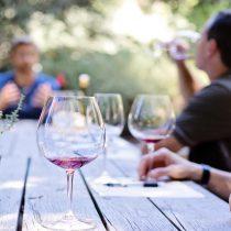 Más de 10 actividades para disfrutar este día nacional del vino