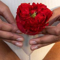 Contra la pobreza Menstrual: organización de 5000 mujeres entregarán este 8M insumos menstruales a mujeres vulnerables