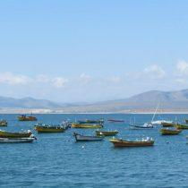 Corte Suprema deja sin efecto resolución que autoriza pesca industrial en zona reservada para captura artesanal