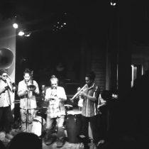 La Mono Brass: Sonidos de una evolución paralela