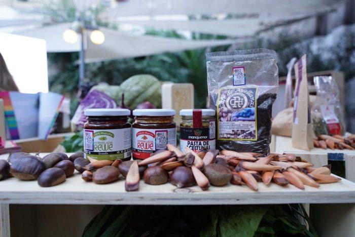 Lanzan recetario originario con alimentos ancestrales
