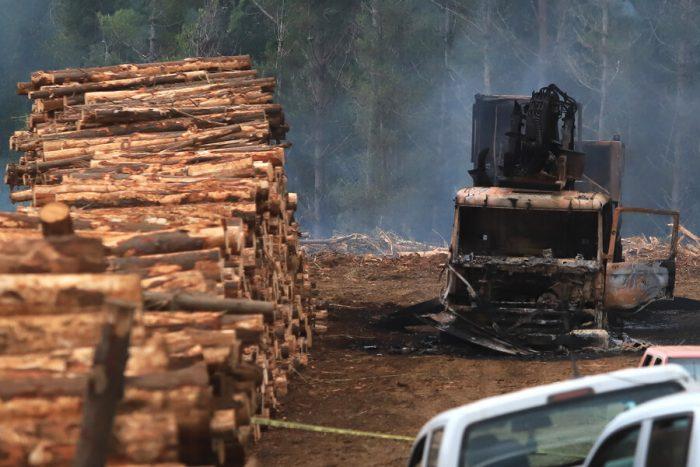 Ataque incendiario en Toltén deja al menos ocho maquinarias de forestal Mininco quemadas al interior de fundo