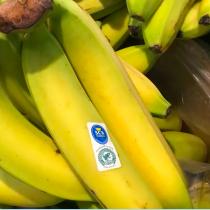 Cinco reglas para elegir alimentos que mejoren su salud y la del planeta