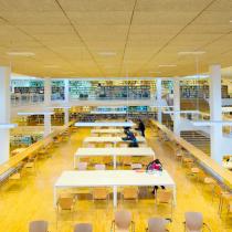 ¿Cuál es el papel de la Universidad en la construcción de sociedades inclusivas?