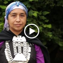 Ingrid Conejeros, candidata a constituyente mapuche: «La Conadi no ha dado el ancho para resolver el tema de la restitución territorial»