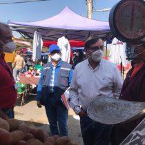 Autoridades intensifican fiscalizaciones sanitarias y de desplazamiento en ferias libres de la Metropolitana