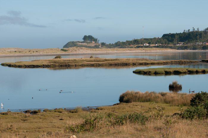 Lanzan convocatoria para apoyar a municipios en declaratoria de humedales urbanos costeros