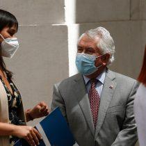 """Tras día de furia de ministro Paris, Izkia Siches pide una """"nueva gobernanza"""" de la pandemia ante preocupante aumento en los contagios"""